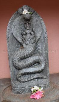 Karnataka_Tumkur_Kuchhangi_Parshwanath_Digambar_Jain_Temple_0012