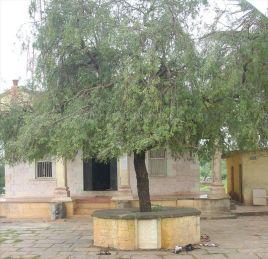 ancient_sri_parshwanatha_swamy_temple_amminabhavi_20120907_1900551121