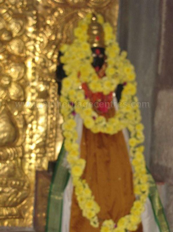 sri_suparshwanath_swami_digambar_jain_temple_midigeshi_karnataka_india_20130218_2001625878