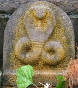 sri_vardhaman_swamy_digambar_jain_temple_bolagramasri_v_20120805_1263626022