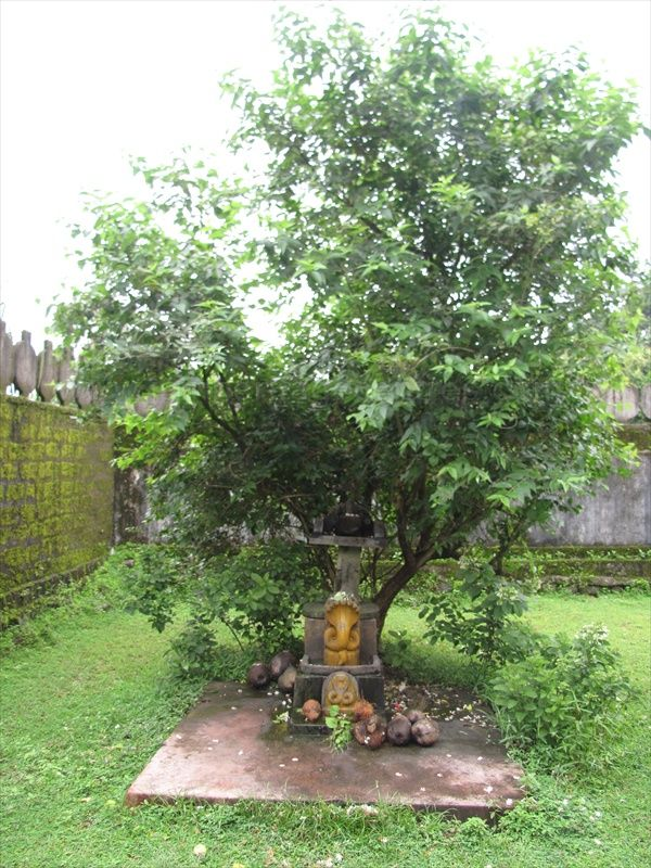 sri_vardhaman_swamy_digambar_jain_temple_bolagramasri_v_20120805_1424194973