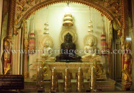 digamber_jain_nasiyan_bhattarakji_at_jaipur_20160622_1743259657