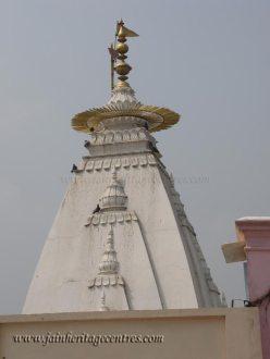 karnawal_20111021_1756737126