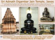 sri_adinath_swamy_digambar_jain_temple_at_jawas_20160813_1202508055