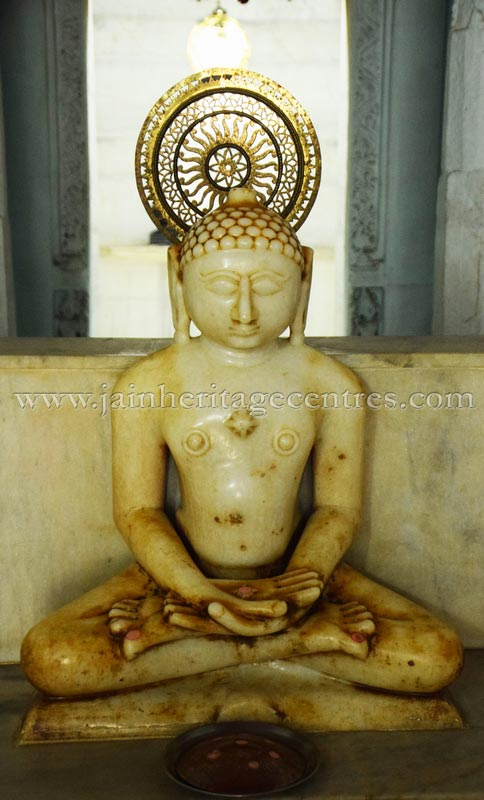 sri_adinath_swamy_digambar_jain_temple_at_jawas_20160813_1947429975