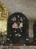 sri_adinatha_swamy_digambar_jain_temple_harave_20120612_1320945396