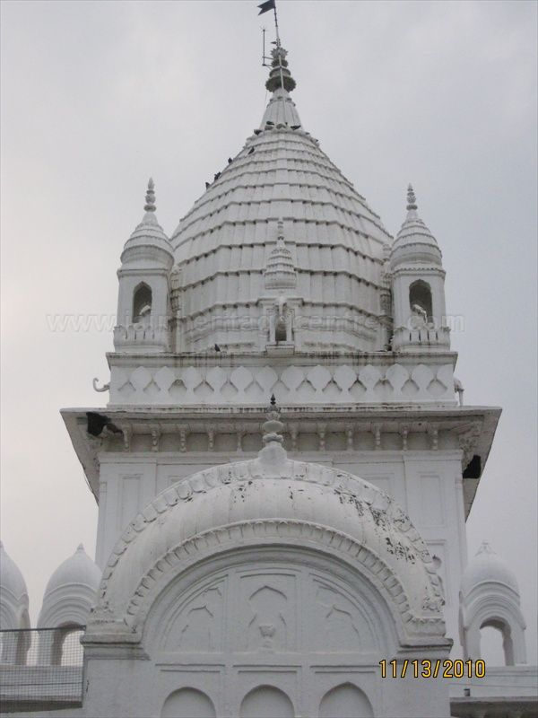 Pinnacle/Shikara of Parshwanath Jain temple, Pateriya.
