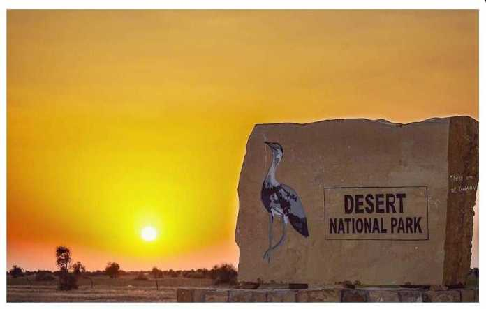 Desert National Park Jaisalmer