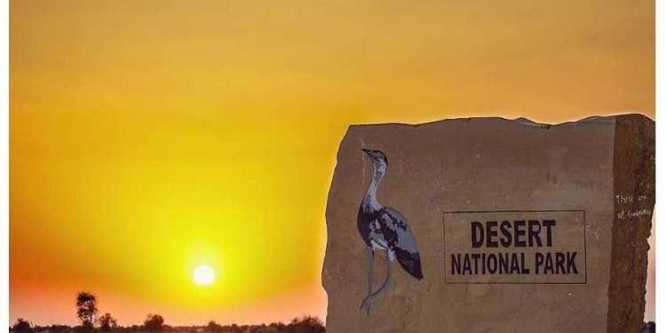 Desert National Park Jaisalmer