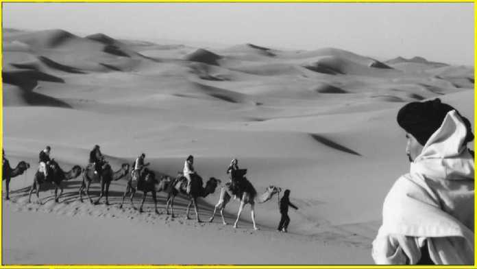 Ancient 'silk route' used to pass through Jaisalmer, merchants came from many countries