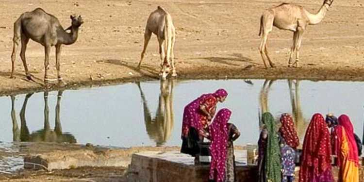 famine never ending tragedy of Jaisalmer district