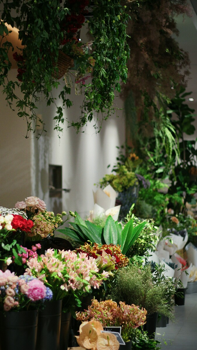 jajanbeken lewis and carrol tea flower market 6