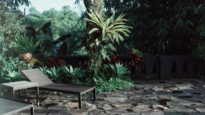 jajanbeken flower garden indonesia