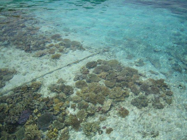 ジャカルタ近郊のビーチリゾート プロウスリブ プトリ島日帰り 1泊2日