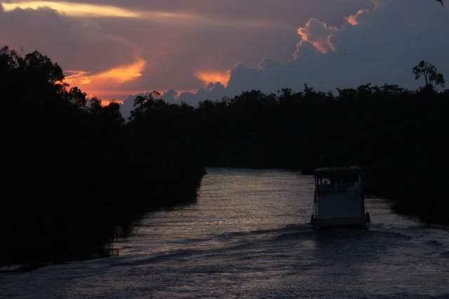 Blocked Sunset in Sekonyer River