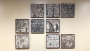 Birch panels