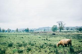 Ashes Barns Endon wedding photography-141