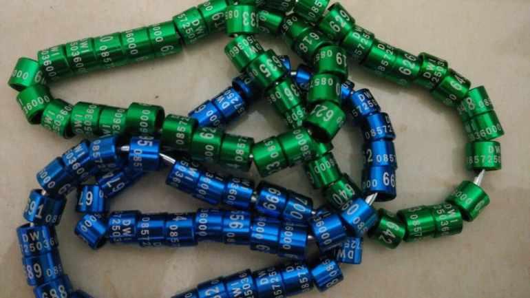 Ring Laser 2 Baris