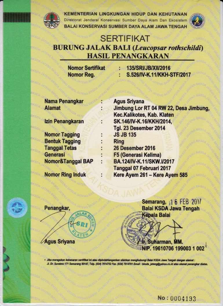 Contoh Sertifikat Burung Jalak Bali