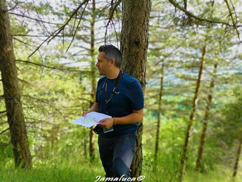 Dove fare trekking a Catanzaro - Discovering Reventino