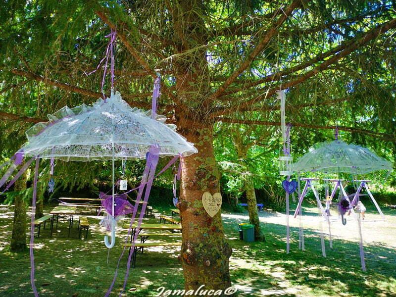 Parco della lavanda - Albero dell'amore