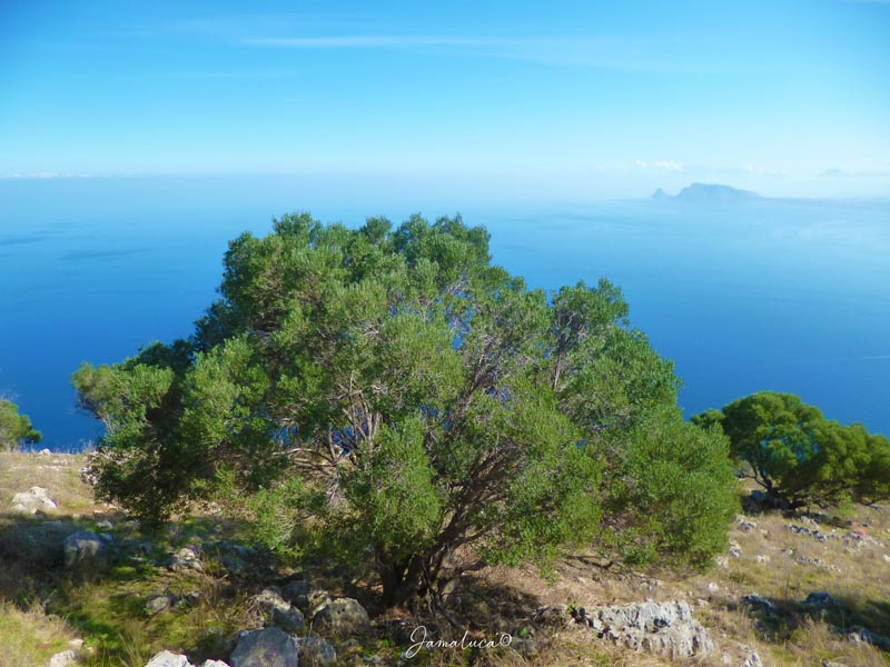 Monte Pellegrino Palermo