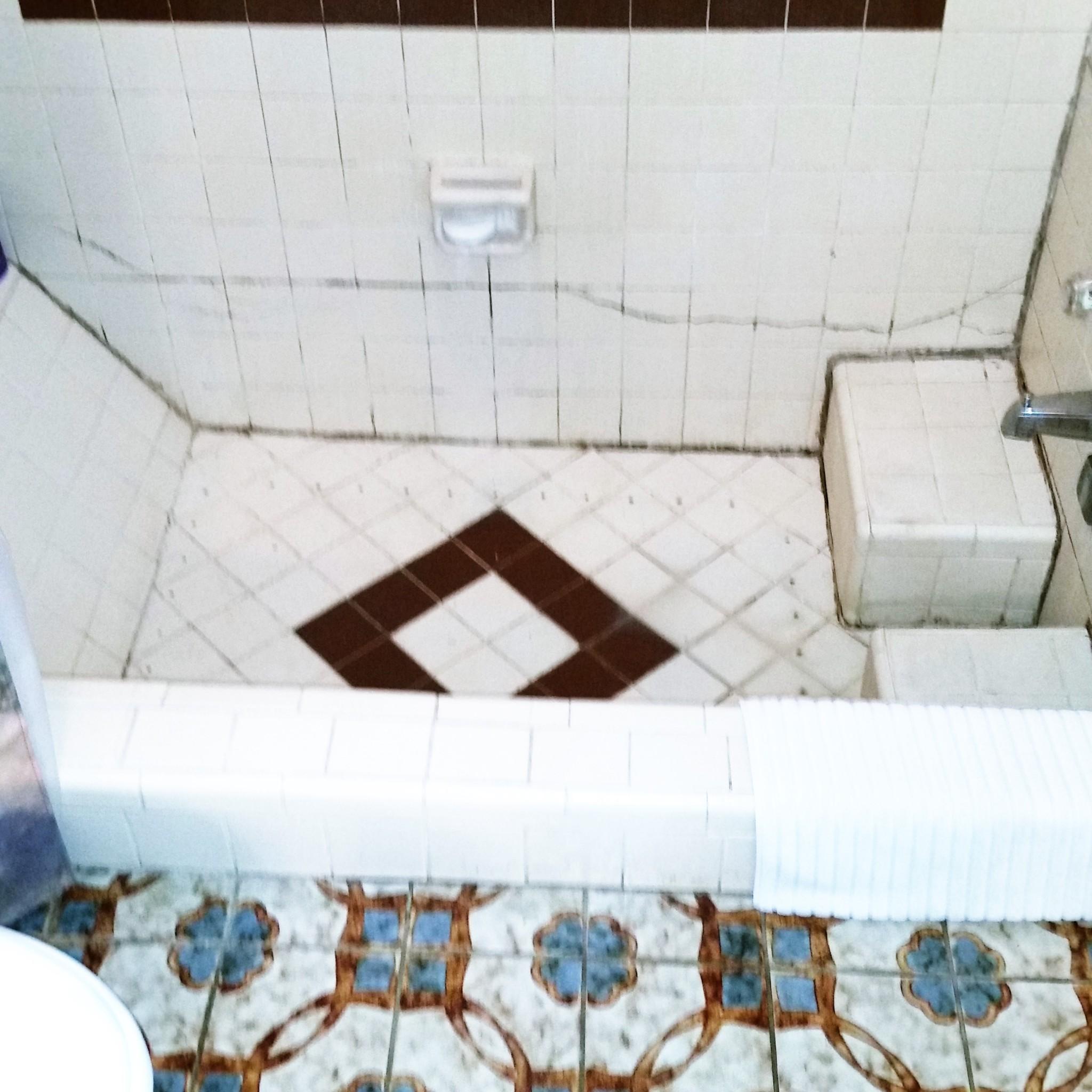 Tampa Bay Bathroom Remodeling: 1st Place NARI Tampa Bay 2016 CotY Bath Remodel Under $25k