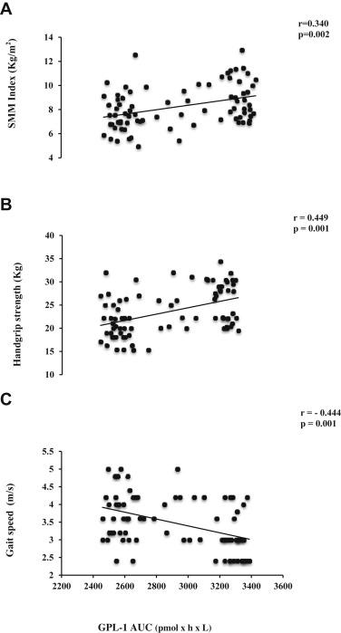 Sarcopenia in Elderly Diabetic Patients: Role of