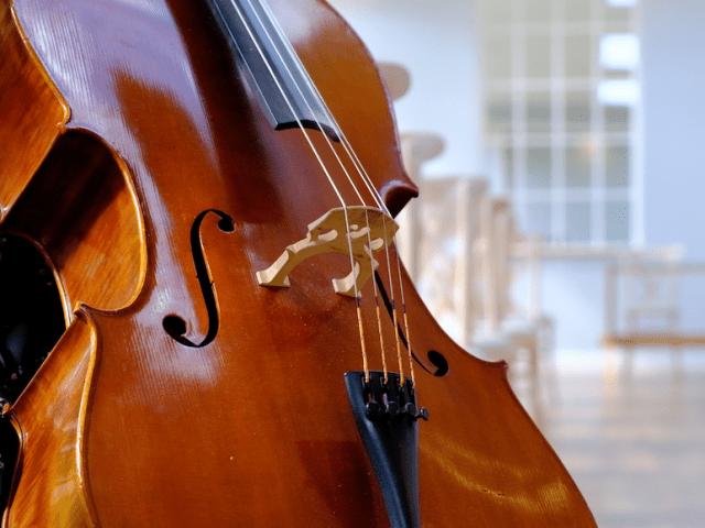 Wedding Cellist