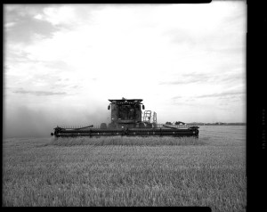 A John Deere combine harvests wheat in southern Oklahoma. Captured on Toyo VX125 camera.