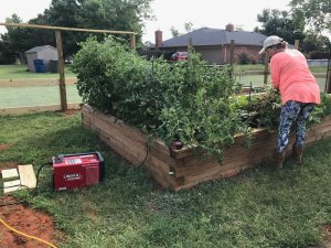 I used my Lincoln Electric Square Wave TIG-200 welder in stick welding mode to build a rebar structure to hold our tomato plants in place after strong Oklahoma winds knocked them down.