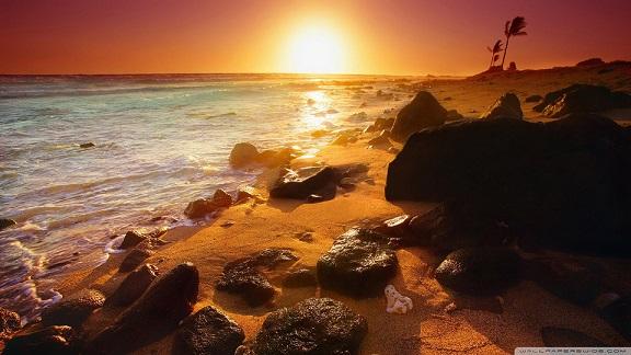 empty-beach-with-sun_00446014