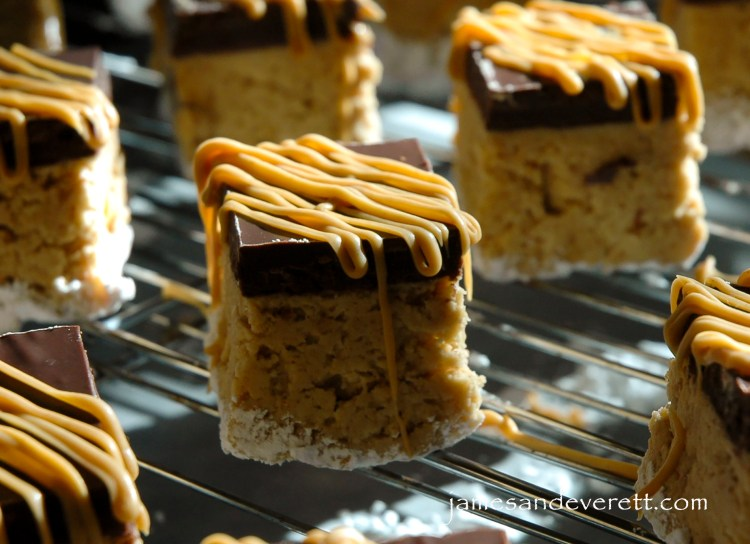 peanut_butter_ball_bars_3