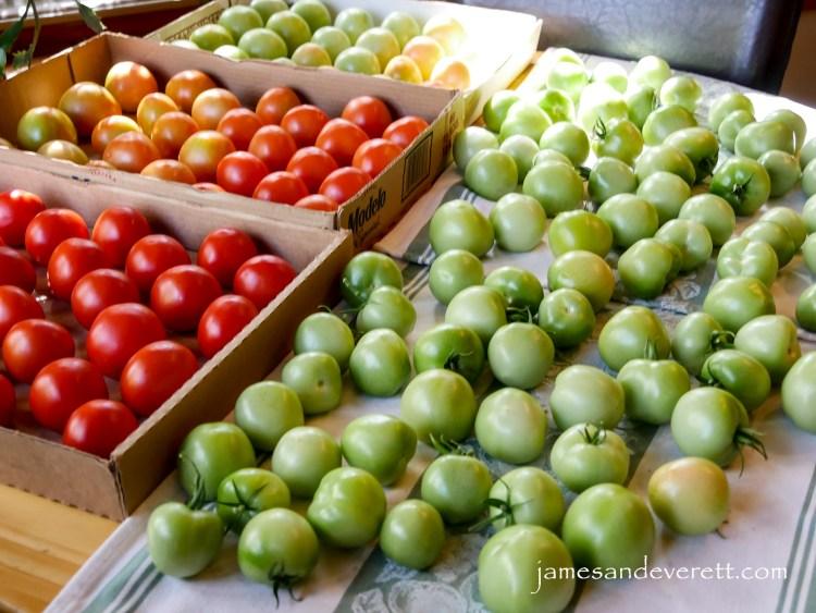 salsa_verde_2