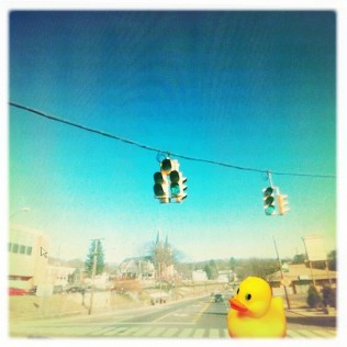 Be Careful Crossing the Street, Ducky! (1)