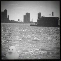 Ducky on Tour, 2
