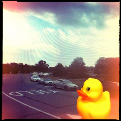 Yield to Ducky!