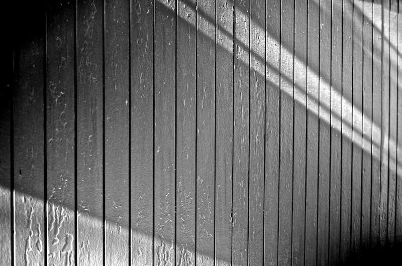 365.14 Lines and Rays