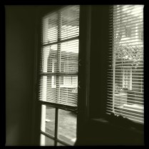 Hipstamatic Americana Lens-Claunch 72 Monochrome