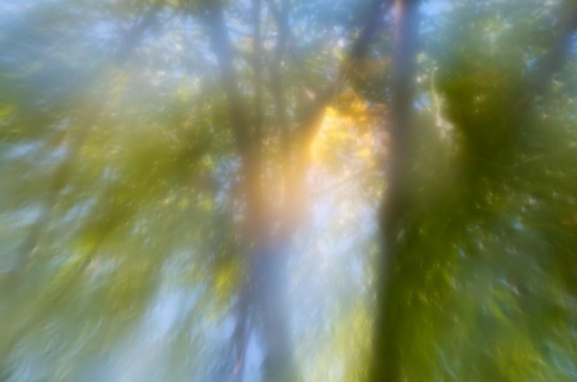 365 280 atmosphere 20121003©JamesECockroft