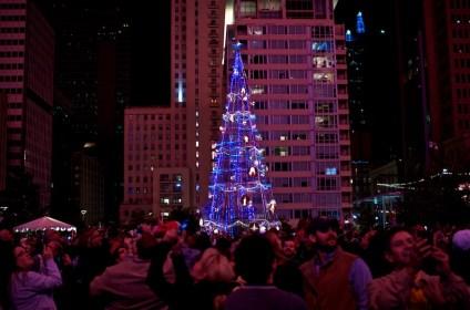 the tree-20121117©JamesECockroft