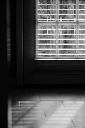 kitchen door and floor, early afternoon