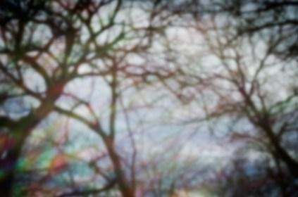 7-52-7_pinhole|11|©JamesECockroft-20130210