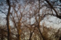 7-52-7_pinhole|38|©JamesECockroft-20130213