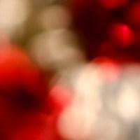 7 52 8 macrobstractionsabstraktes bild©JamesECockroft 20130218