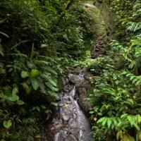 7 52 34 Costa Rica iPhonedead waterfall©JamesECockroft 20130822