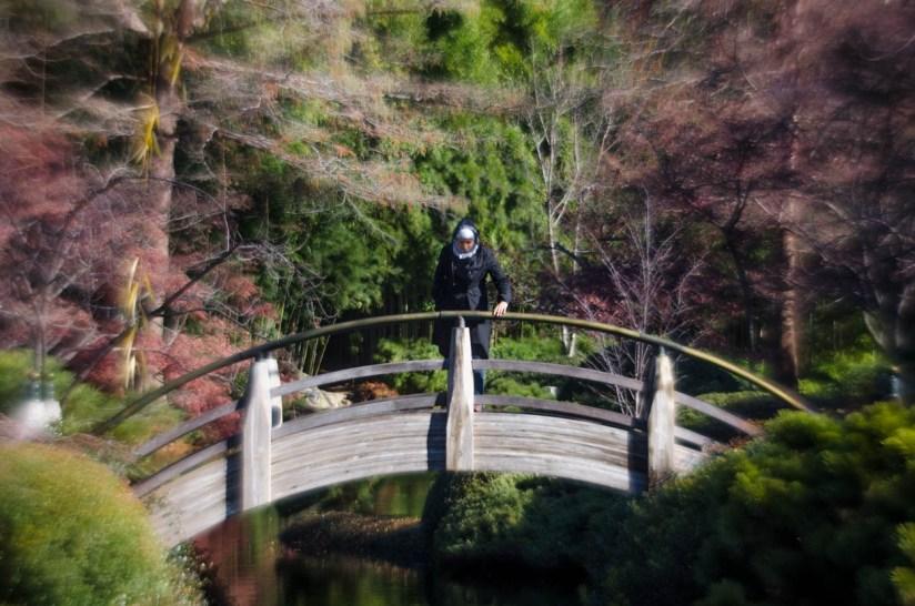 Hana at the Fort Worth Botanical Gardens©JamesECockroft 20140104