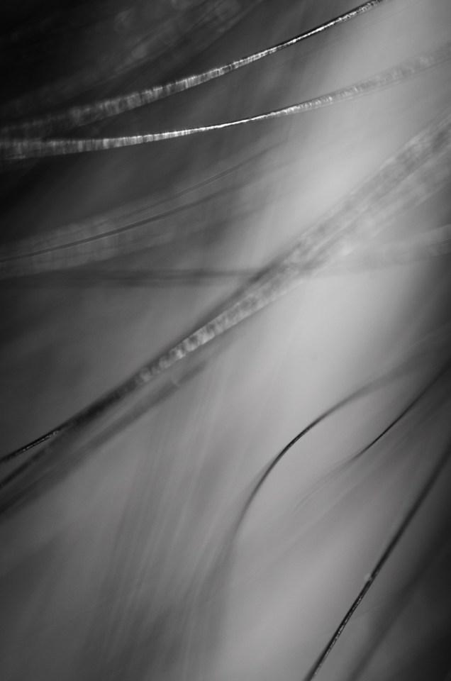 too close|7|©JamesECockroft-20140324