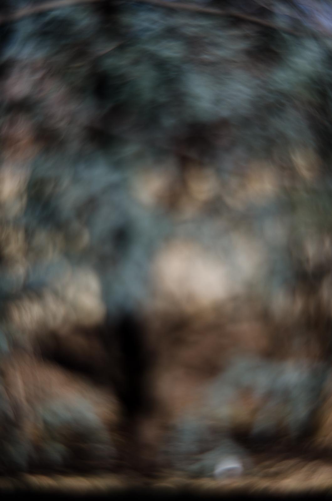 Fort Worth Botanical Gardens D700023©JamesECockroft 20140104