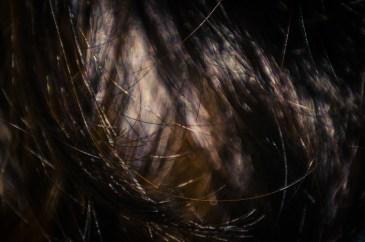 Hair Studies 2|9|©JamesECockroft-20140803